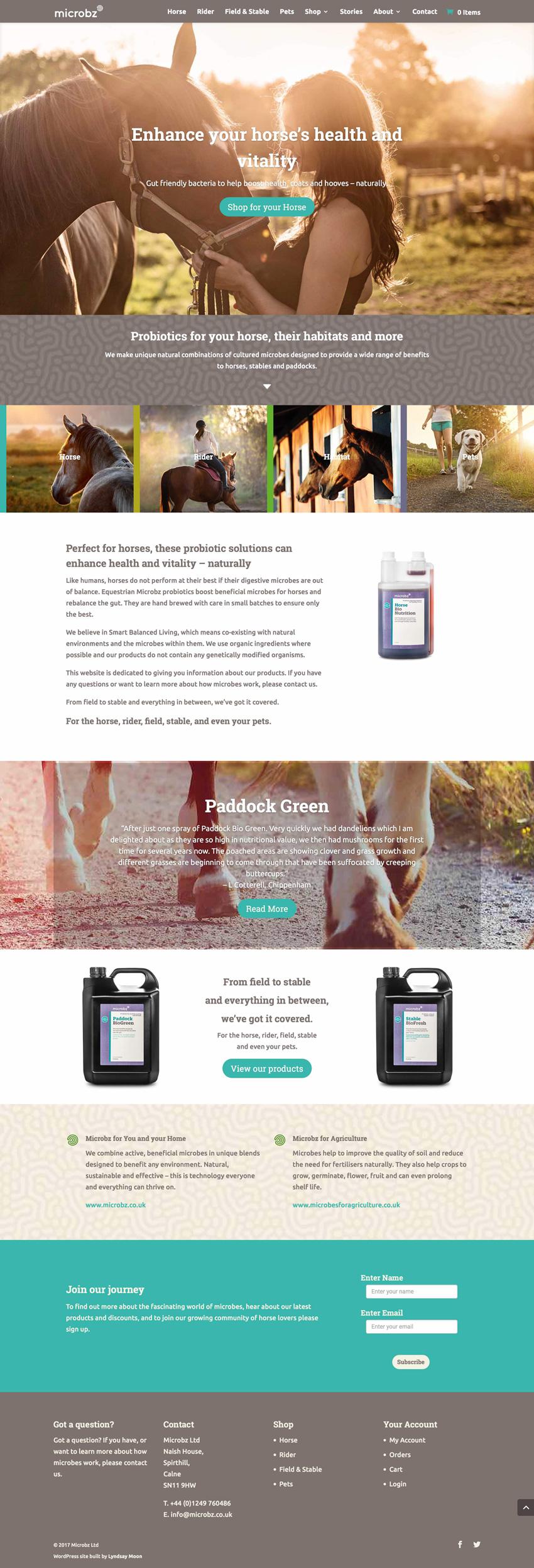 Equestrian Microbz Website Design screenshot